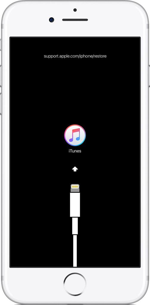 iPhone в режиме DFU